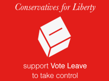 We'll Vote Leave to take control