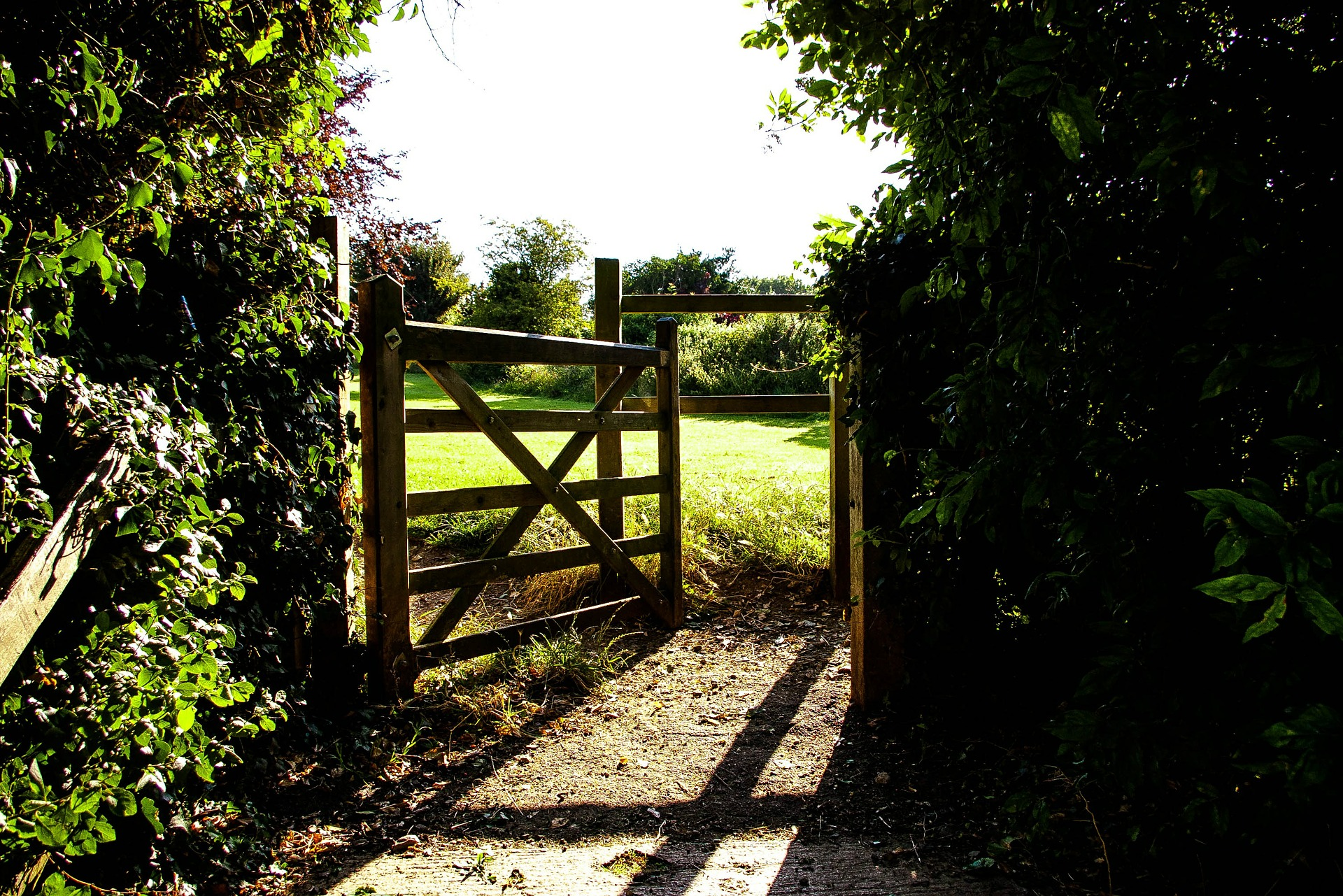 https://pixabay.com/en/gate-field-fence-grass-green-419890/