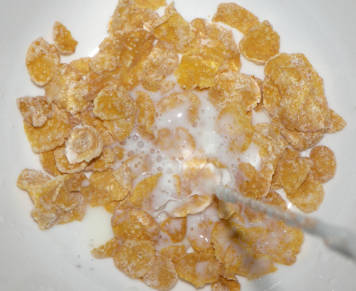 frosted_flakes_with_milk